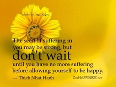 Thich Nhat Hanh Quote - The seed of suffering in you may be strong, but don't wait until you have no more suffering before allowing yourself to be happy.