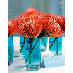 orange and blue wedding theme - Google Search