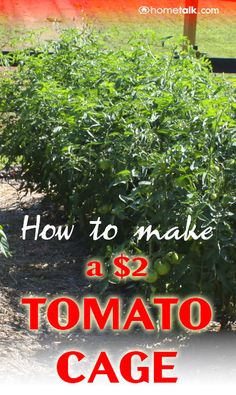 How to Make a {$2} Tomato Cage!