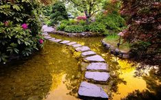 water gardens, stone paths, water features, garden paths, japanese gardens, garden features, zen gardens, walk, stepping stones