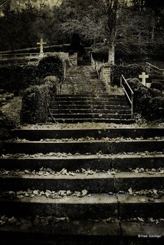 Steps to cemetery