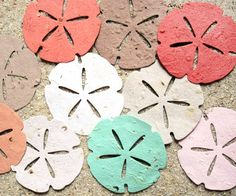 100 Large Plantable Paper Sand Dollar Shells  by recycledideas,