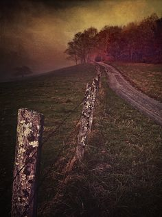 Country Road in the Appalachian Mountains 11x14 by vegabluephoto, $165.00