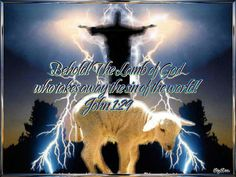 Behold - Lamb of God