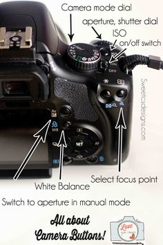 All about camera buttons