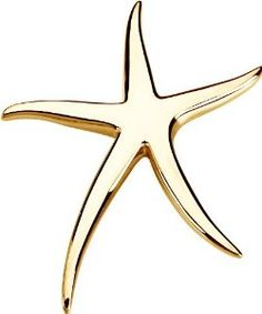 Sterling Silver Starfish Brooch / Pendant - http://finejewelrygalleria.com/jewelry/brooches-pins/sterling-silver-starfish-brooch-pendant-com/