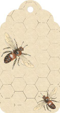 Free Printable~ Bee Tag