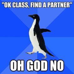 awkward penguin, college life, penguin humor