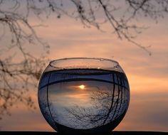 inspiration, glasses, dream, sunsets, aquarium, wine glass, fishbowl, photographi, bowls