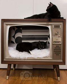 vintage tv turned cat bed