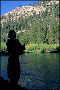 Great fishing pics on pinterest fly fishing fishing and for San joaquin river fishing
