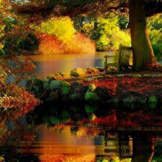 Altamont Gardens. County Carlow, Ireland