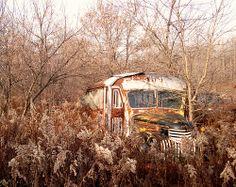 buses, businhabit space, rusti wonder, junk yard, yard rust