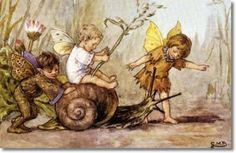 brownies elves and fairies - Bing Images