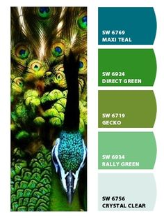 Peacock Colors Chip It! by Sherwin-Williams – msaidan