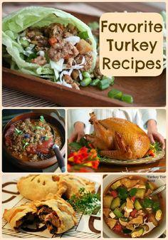 Family Kitchen Favorites: 22 Tasty Turkey Recipes