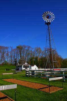 Amish farmstead, Lancaster Pa