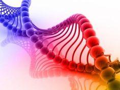 New Sensitivity Gene Discovered | Alternet