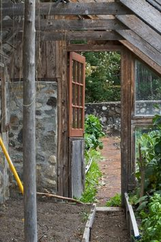nearing_greenhouse_inside