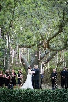 woodland wedding (I love how they have all that ribbon and lights on the tree!)