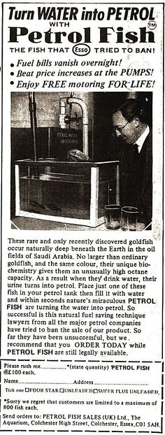 Weird on pinterest lol tech gadgets and hilarious for Mail order fish