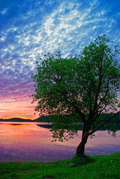✯ beauti landscap, lake tree, rainbow sunset, beauti natur, beautiful landscapes, trees, seren natur