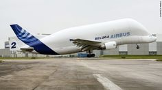Airbus Beluga Cargo Plane Transports Aircraft Parts and Resembles a Flying Whale