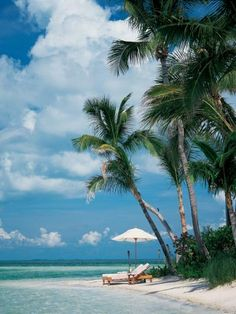 Little Palm Island Resort  Spa - Florida Keys | http://howtomakespaproductsathome.blogspot.com
