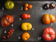 Guide to tomatoes