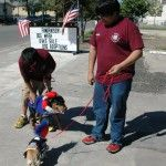 4-H gives helping hand at service dog fundraiser in San Antonio