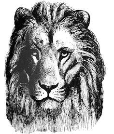 **FREE ViNTaGE DiGiTaL STaMPS** - Lion Head printable image