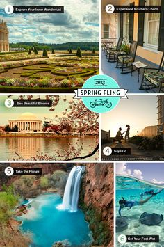 We're in the mood for spring! Where can you experience a #TCSpringFling? Find out here...
