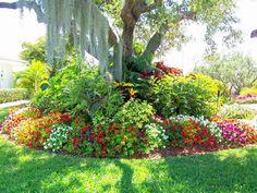 landscaping ideas, garden ideas, tree branch, front yards, curb appeal, garden design ideas, flower beds, tropical gardens, flowers garden