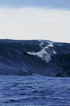 >Surf