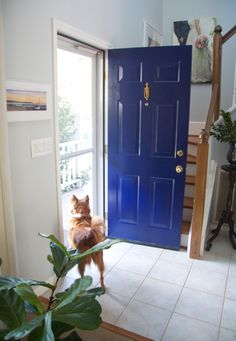 Glitter and Goat Cheese - Front door painted in Benjamin Moore Midnight Navy with brass hardware