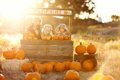 pumpkin stand: photo MUST next year!