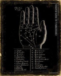 Palmistry / palm reading / fortune teller