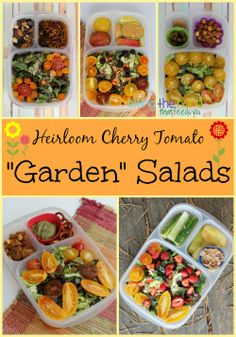 Tons of Tomato Garden Salads packed for lunch | packed in @EasyLunchboxes containers