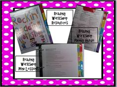 excellent reading and writing mini-lessons