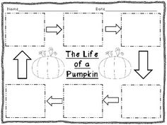 Fall Freebie: Life Cycle of a Pumpkin & Apple Graphic Organizers