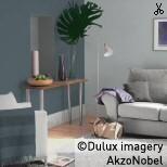 Dulux Steel Symphony 1(blue) & steel grey 2