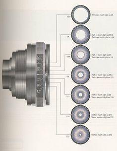 Photography: Single Aperture vs. Variable Aperture Lenses