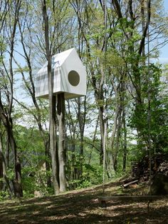 Japanese treehouse serves as an apartment complex for birds