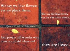 love quotes we say we love flowers