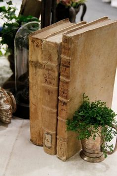 old books, greens bookend