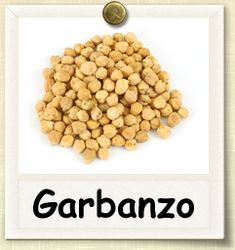 How to Grow Garbanzo Beans | Guide to Growing Garbanzo Beans.  To grow next year?  Next to the Fava