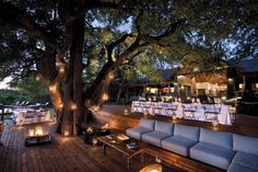Tinga - Kruger National Park. The best camp we ever stayed at - that tree!