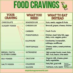 Food Cravings <<<< What You Should Eat