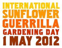 International Sunflower Guerrilla Gardening Day - 1 May 2012