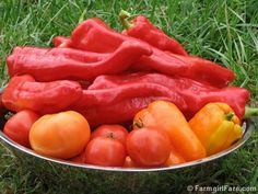 Preserving the Harvest: How to Freeze Sweet Peppers - No Special Equipment or Boiling Water Required!